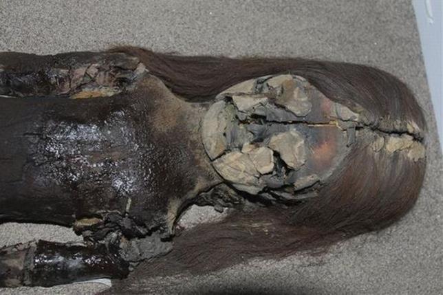 ¿Por qué se deshacen ahora momias  de 7.000 años?